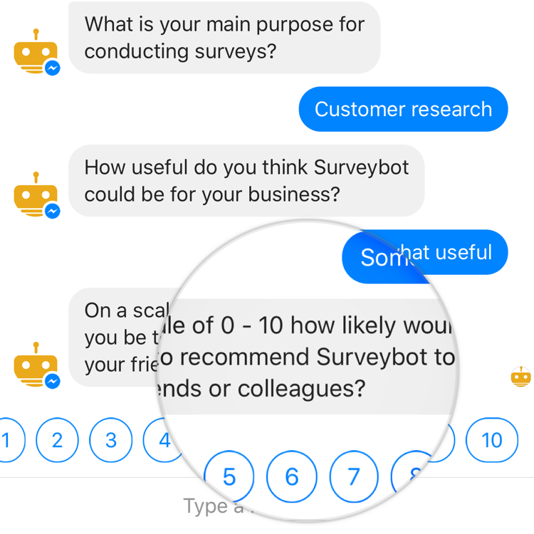 Surveybot survey example photo